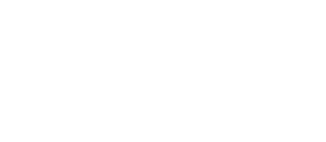 dvv 300x131 - Profil
